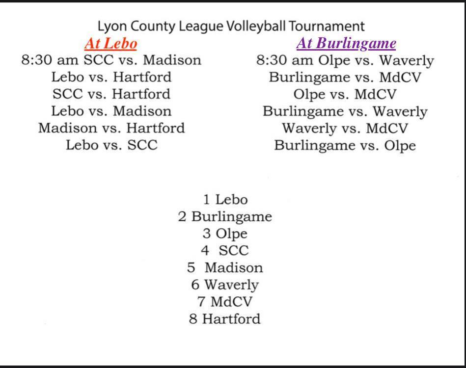 LCL Volleyball Teams