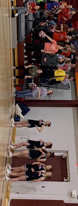 Lebo student cheering section at the Herington tournament.
