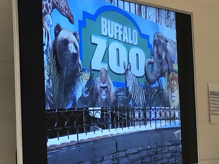 The sign to the Buffalo Zoo.  Bears, Apes, Zebra