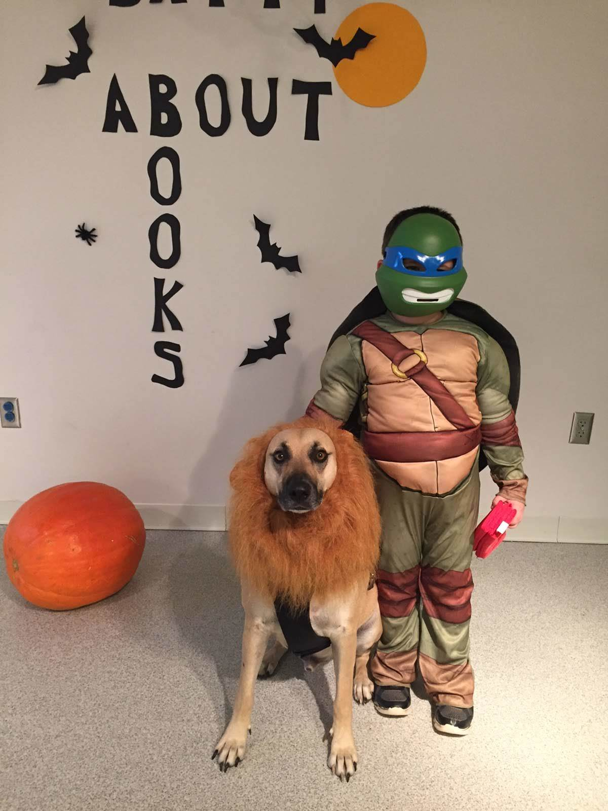 Teenage Mutant Turtle and Lion Dog